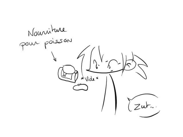 20_03_2011_rupture