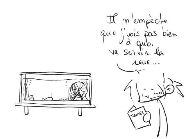 05_04_2011_roue_2